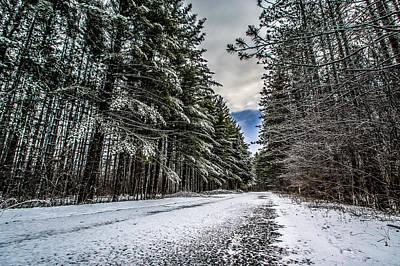 Snowy Forest Lane Art Print