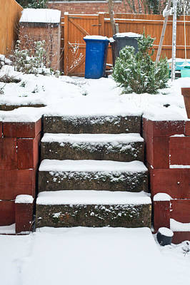 Snowy Garden Art Print by Tom Gowanlock