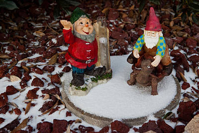Photograph - Snowy Gnome by Melinda Ledsome