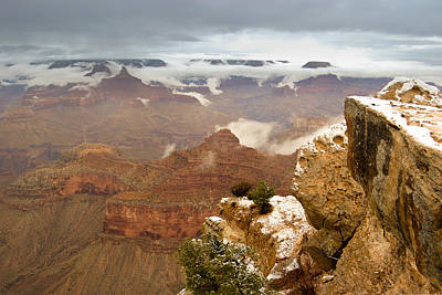 Photograph - Snowy Grand Canyon by Dakota Light Photography By Dakota
