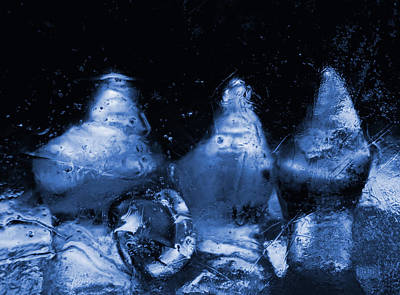 Photograph - Snowy Ice Bottles - Blue by Sami Tiainen