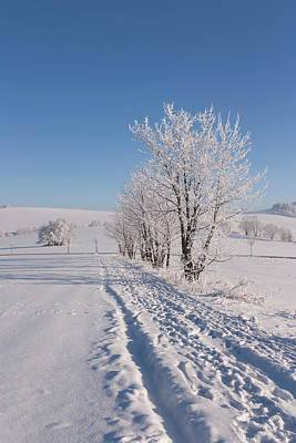 World Forgotten Rights Managed Images - Snowy landscape  Royalty-Free Image by Jaroslav Frank