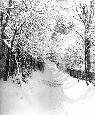 Snowy Lane Art Print