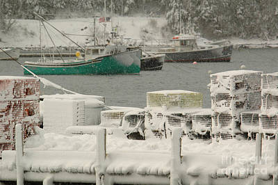Photograph - Snowy Lobster Traps by Alana Ranney