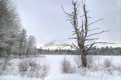 Landscape Photograph - Snowy Marsh by Donna Doherty