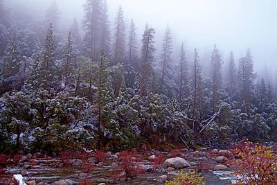 Photograph - Snowy Merced River by Jim Pavelle