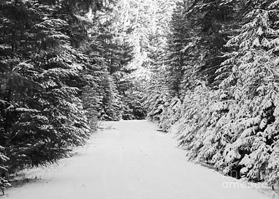 Snowy Mountain Road - Black And White Art Print by Carol Groenen