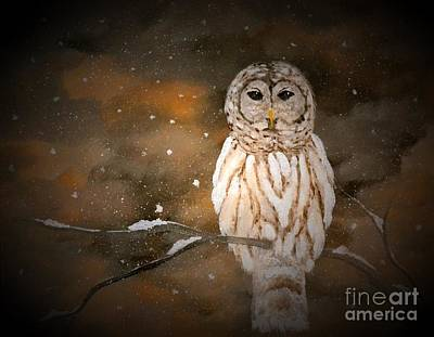 Painting - Snowy Night Owl by Denise Tomasura