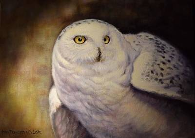 Wall Art - Painting - Snowy Owl by Anna Franceova