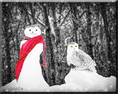 Snowy Owl Photograph - Snowy Owl Snowman by LeeAnn McLaneGoetz McLaneGoetzStudioLLCcom