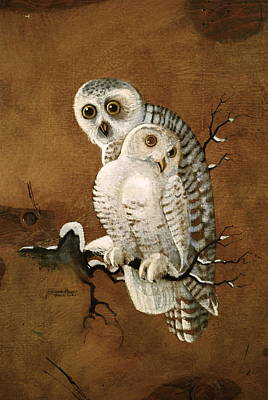 Painting - Snowy Owls by Richard Hinger