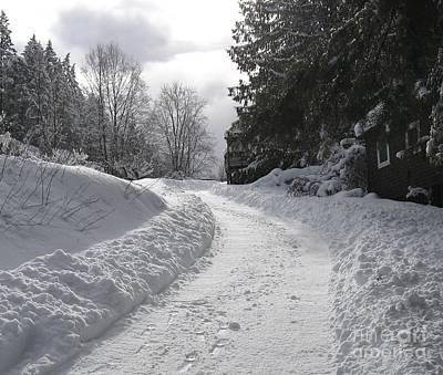 Photograph - Snowy Path by Leone Lund