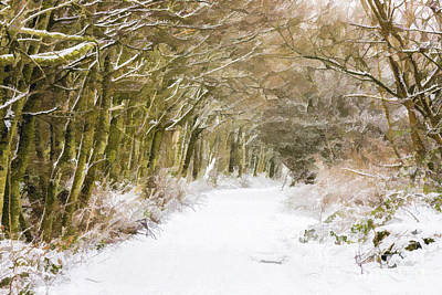 Digital Art - Snowy Path by Liz Leyden