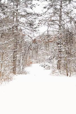 Snowy Path Art Print by Mary Timman