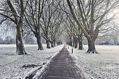 Snowy Path Through Jesus Green In Cambridge Uk Art Print by Justin Paget