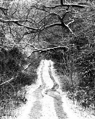 Photograph - Snowy Path by Val Stone Creager