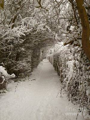 Print featuring the photograph Snowy Path by Vicki Spindler