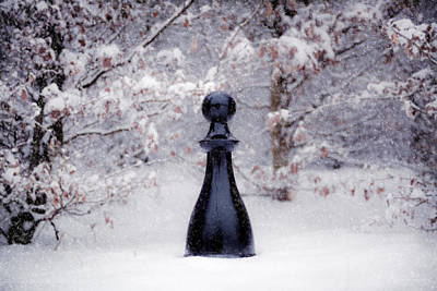 Winter Photograph - Snowy Pawn by Mihai Ilie