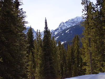 Photograph - Snowy Peaks by Yvette Pichette
