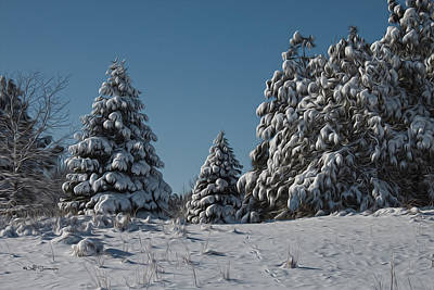 Photograph - Snowy Pines by Jeff Swanson