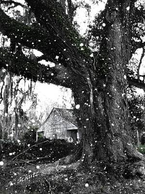 Plantations Mixed Media - Snowy Plantation by Kelly Schutz