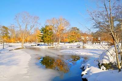 Photograph - Snowy Pond by Diana Angstadt