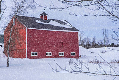 Photograph - Snowy Red Barn by Alana Ranney