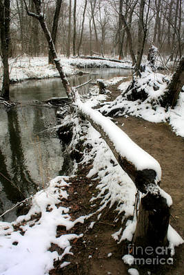Photograph - Snowy River by Michael Creamer
