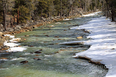 Photograph - Snowy Riverbank by Mary Haber