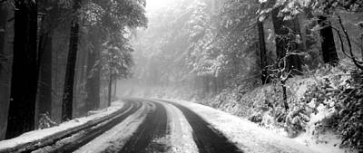 Photograph - Snowy Road Forest by Jeff Lowe