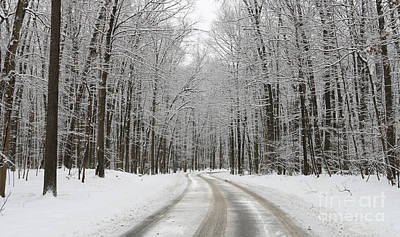 Whitehouse Photograph - Snowy Road In Oak Openings 7058 by Jack Schultz