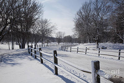 Photograph - Snowy Road by Jim West