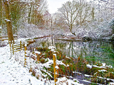 Digital Art - Snowy Rookwood by Andrew Middleton