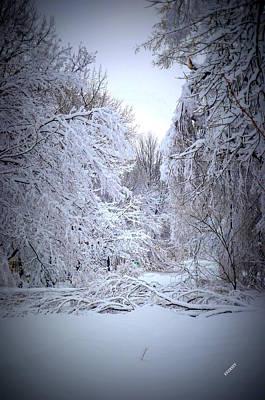Snowy Scene Art Print by Karen Kersey