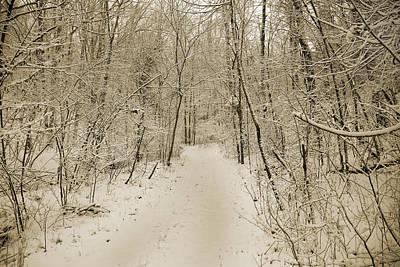 Country Scene Photograph - Snowy Sepia by Betsy Knapp