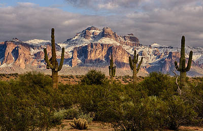 Photograph - Snowy Splendor On The Superstitions by Saija  Lehtonen