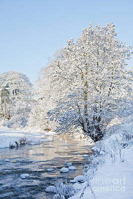 Photograph - Snowy Stream by Liz Leyden