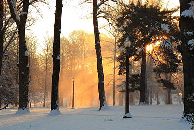Photograph - Snowy Sunrise In Tower Grove Park  by Scott Rackers