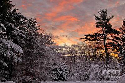 Photograph - Snowy Sunrise by Karin Pinkham