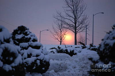 Photograph - Snowy Sunrise by Mark McReynolds
