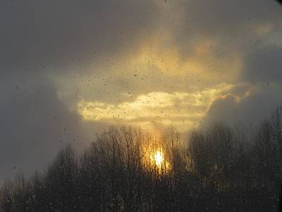 Photograph - Snowy Sunset by Diane Mitchell