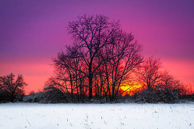 Photograph - Snowy Sunset by Ron Pate