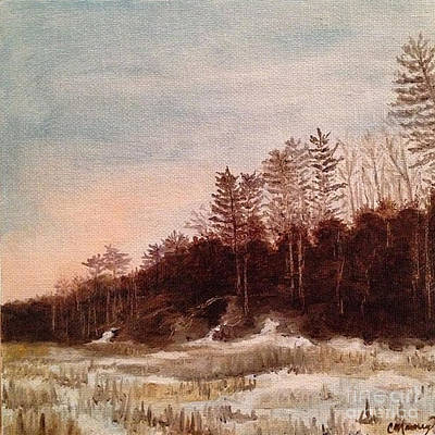 Snowy Night Painting - Snowy Trail by Catherine Maroney