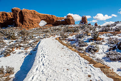 Snowy Trail To The North Window Art Print