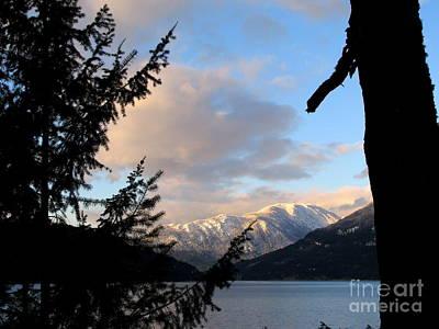 Photograph - Snowy Vista by Leone Lund