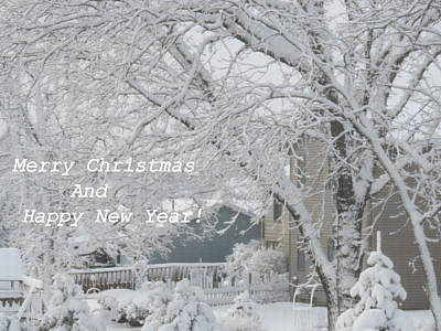 Photograph - Snowy White Christmas Card by Kay Novy
