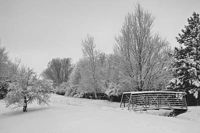 Comedian Drawings - Snowy Winter Landscape View BW by James BO Insogna