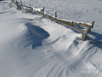 Christmas Holiday Scenery Photograph - Snowy Winter Scene Detail by Kiril Stanchev