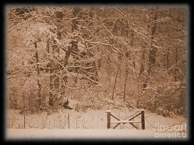 Snowy Woods In Bronze Art Print by Jamie Mcclellan Elsner