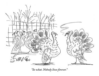 Turkey Drawing - So What. Nobody Lives Forever by Edward Frascino